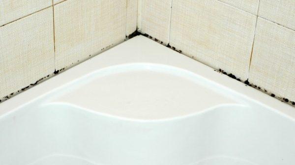 Чёрная плесень в месте соединения края ванной и плитки
