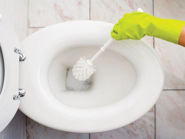 Способ почистить унитаз внутри при помощи ершика