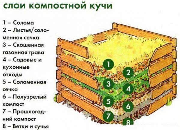 Слои на компостной куче