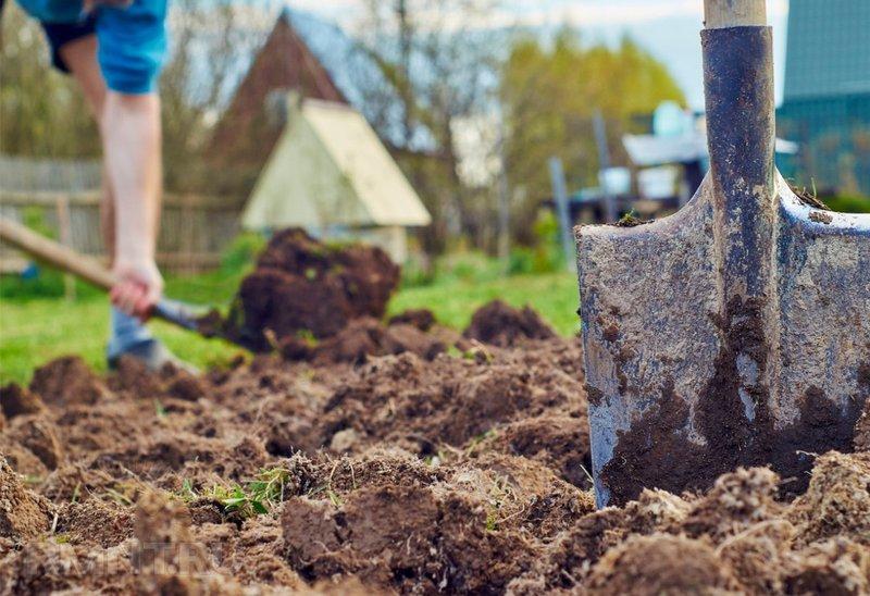 Почему нельзя копать землю после Покрова, объяснение традиции