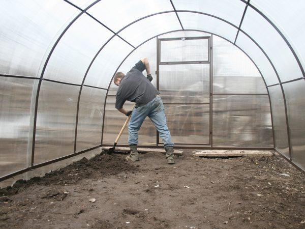 Замена грунта в теплице