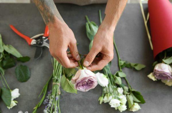 Черенкование роз