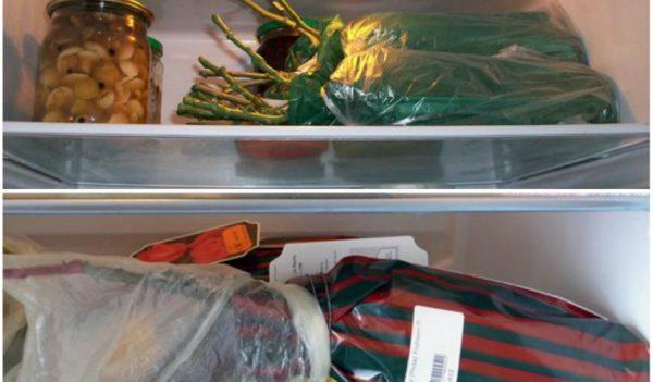 Будущие саженцы розы на хранении в холодильнике