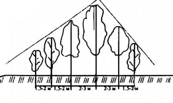 Треугольная схема посадки
