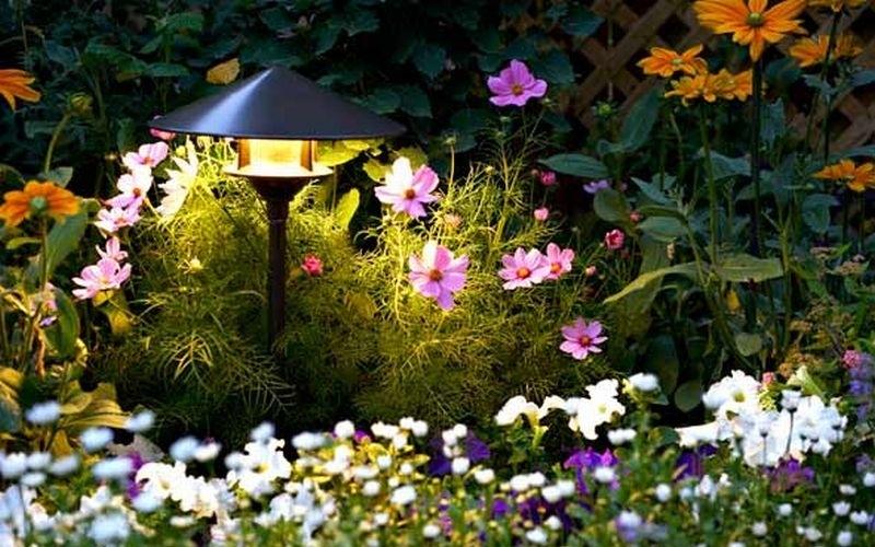 Луна влияет на сад и огород: почему дачникам стоит ориентироваться на лунный календарь